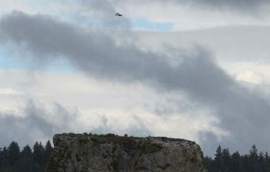UAS Seabird Survey Test Flights Draft Report