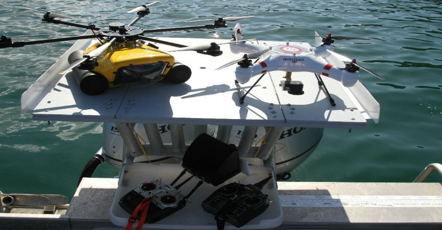 The Use of Unmanned Aerial Systems in Marine Mammal Research